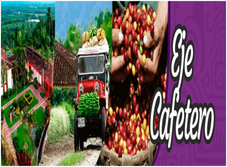 EJE CAFETERO 2019